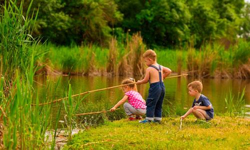 Интересные загадки про рыб для детей