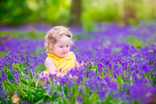 Красивые стихи про цветы колокольчик для детей