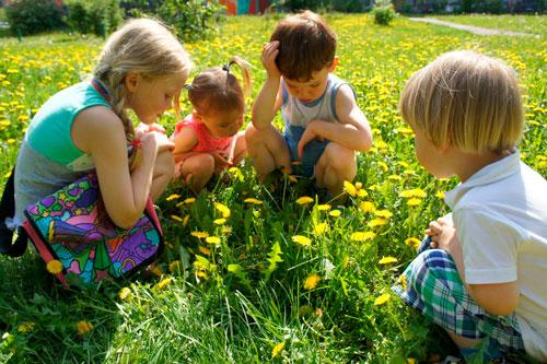 Красивые и короткие стихи про лето для детей русских поэтов