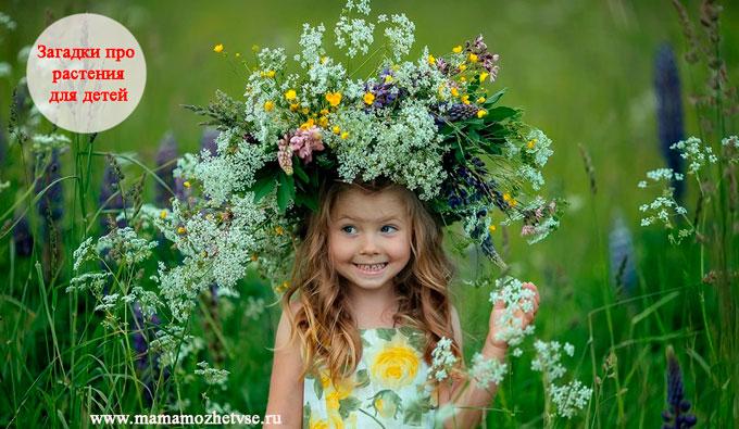 Загадки про растения для детей
