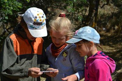 Игры на сплочение коллектива для подростков в летний лагерь