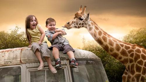 детские загадки про жирафа для дошкольников