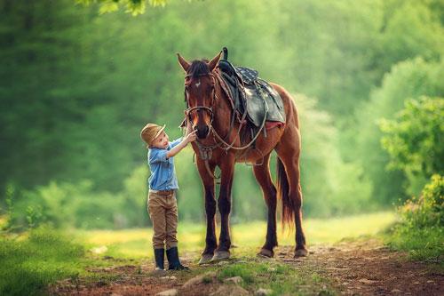 Красивые стихи про лошадку для детей