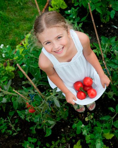 Загадки про помидор с ответами для детей 7-9 лет