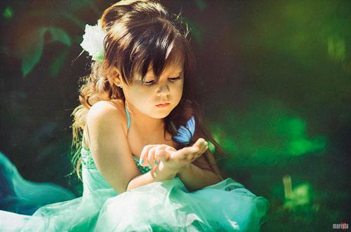 Детские загадки про бабочку с ответами