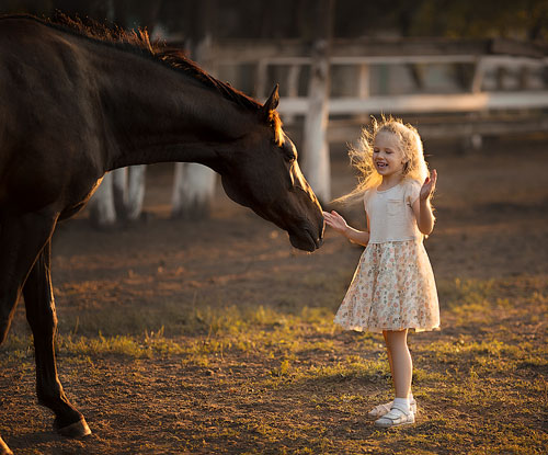 Загадки про лошадку для детей 7-9 лет