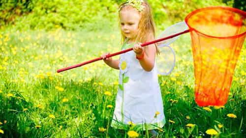 Загадка про стрекозу с ответами для детей 5-7 лет