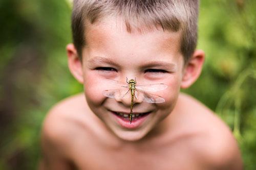 Загадка про стрекозу с ответами для детей