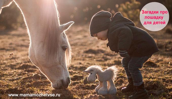 Загадки про лошадку для детей