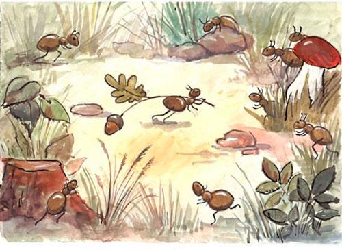 Загадки про муравья с ответами для детей