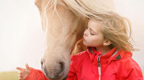 Стихи про лошадку для детей 5-7 лет