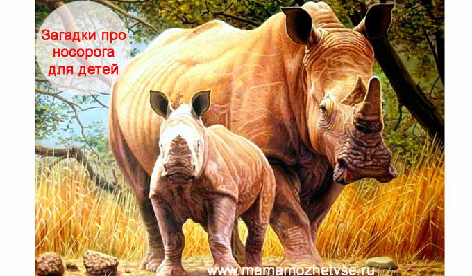 Загадки про носорога для детей