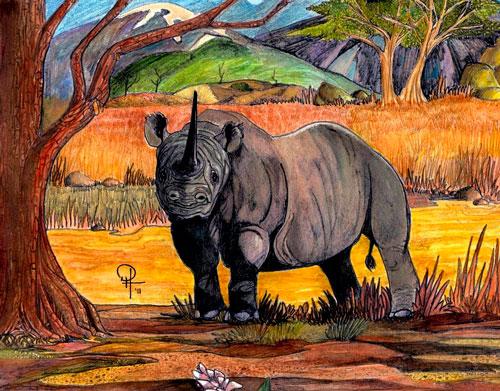 Загадки про носорога с ответами для детей