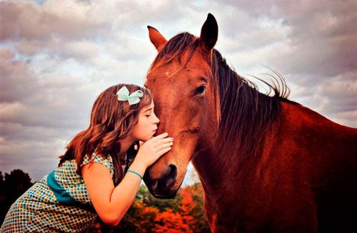 Детские загадки про лошадку