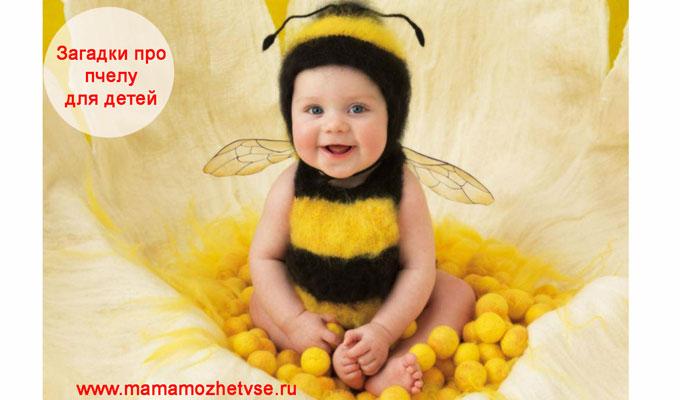 Загадки про пчелу для детей