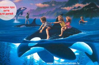 Загадки про кита для детей