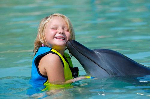 Загадки про дельфина с ответами для детей 5-7 лет