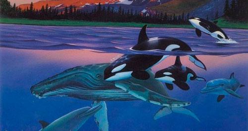 Загадки про кита с ответами для детей 5-7 лет
