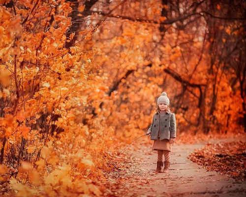 Золотая осень: детская фотосессия 5