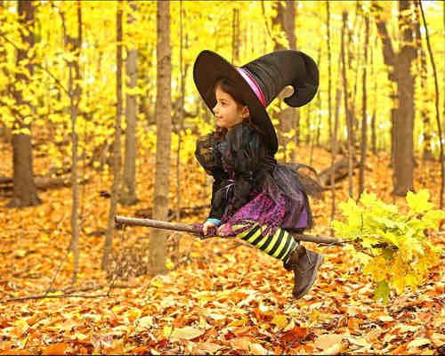 Краски осени: детская фотосессия 3