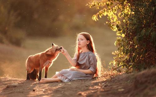 Загадки про лису с ответами для детей
