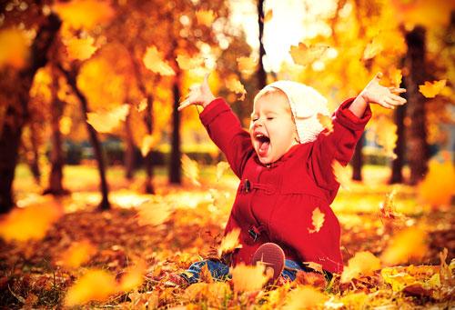 Загадки про листья с ответами для детей 5-7 лет