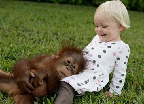 Загадки про обезьяну с ответами для детей 5-7 лет