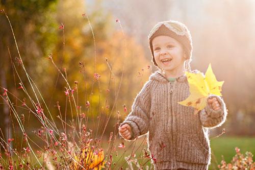 Загадки про листья с ответами для детей
