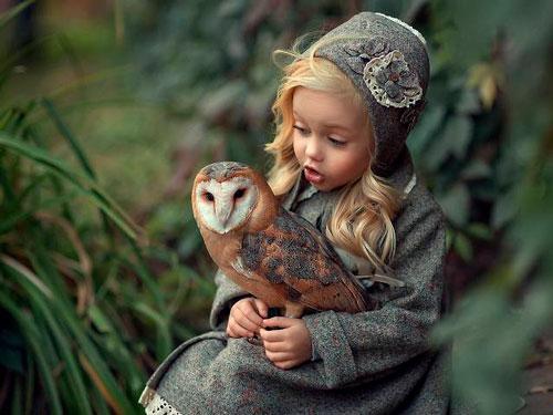 Загадки про сову с ответами для детей