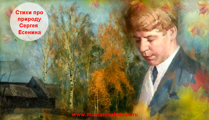Стихи Есенина про природу