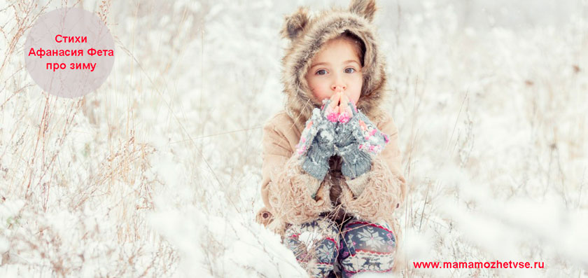 Стихи про зиму Афанасия Фета