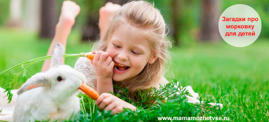Загадки про морковку для детей