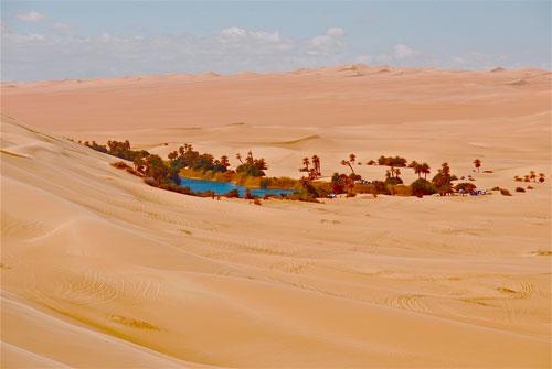 Загадки про пустыню для детей 5-7 лет