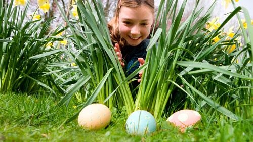 Загадки про яйцо для детей с ответами