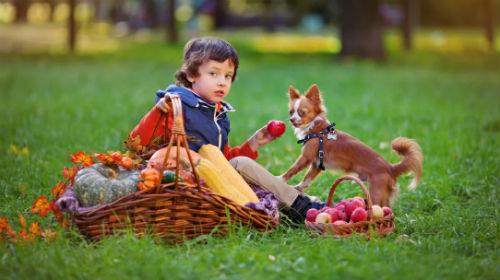 Лучшие идеи для детской и семейной фотосессии 8