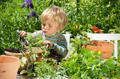 загадки про сад для детей с ответами