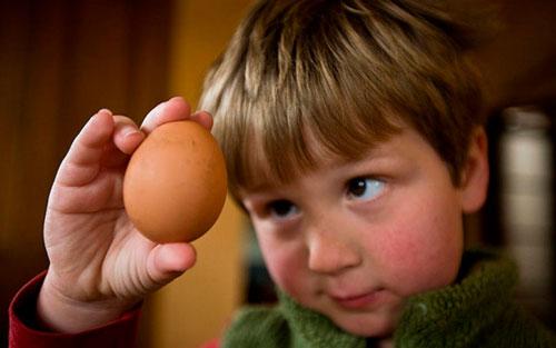 Загадки про яйцо с ответами для детей