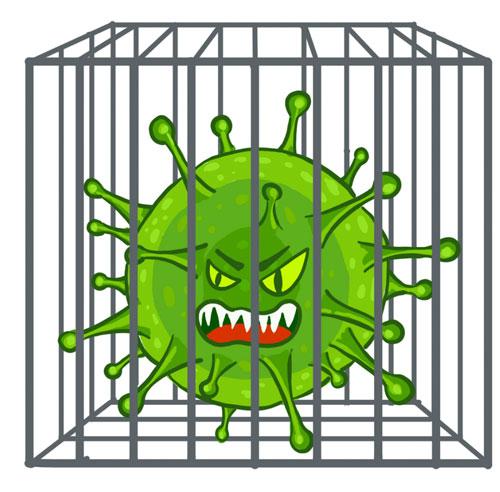 Загадки про коронавирус с ответами