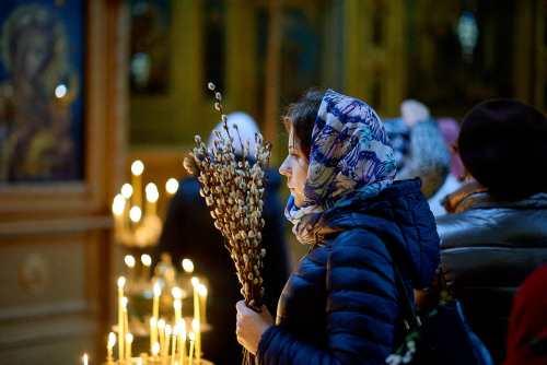 традиции и приметы вербного воскресенья