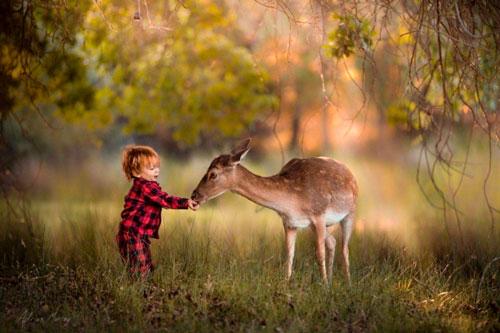 Загадки про оленя для детей с ответами