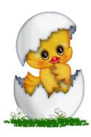 Сказка про цыпленка и курочку