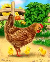 Сказка про цыпленка