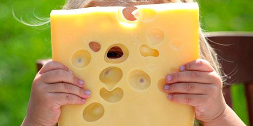 Загадки про сыр для детей с ответами