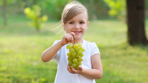 Загадки про виноград для детей с ответами