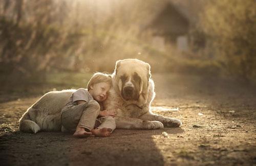 Фотограф Елена Шумилова 3