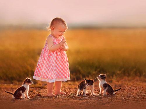 Загадки про котёнка для детей 5-7 лет