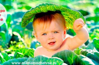 Загадки про капусту для детей