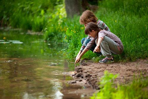 Загадки про болото