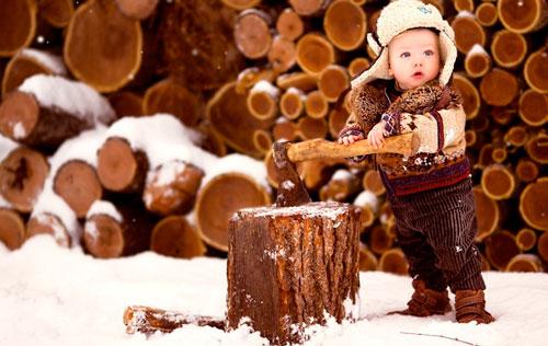 Загадки про дрова