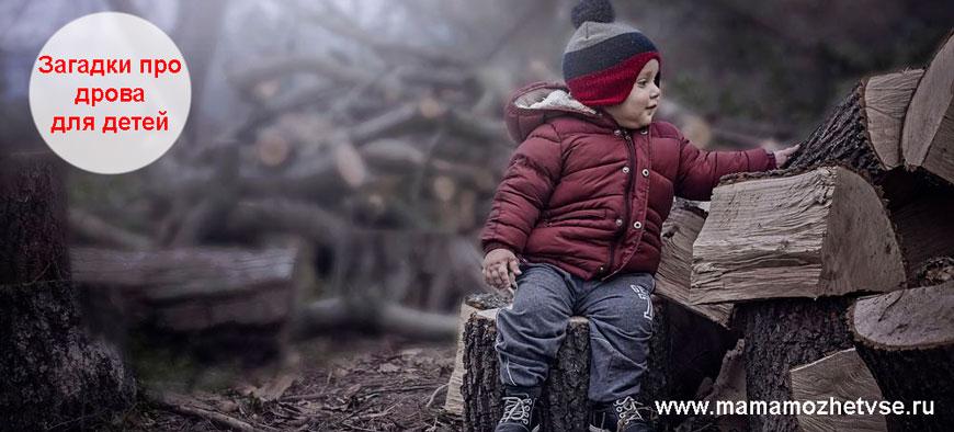Загадки про дрова для детей